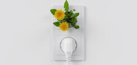 Technologie ekologiczne – TOP 10 akcesoriów