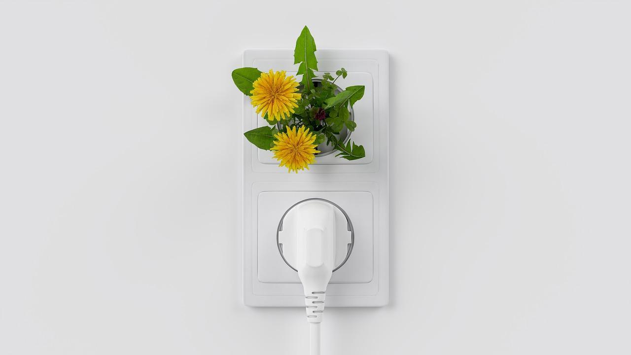 Technologie ekologiczne - TOP 10, które zaskakują i dbają o środowisko