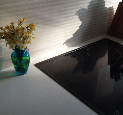 Płyta ceramiczna czy indukcyjna w naszej kuchni
